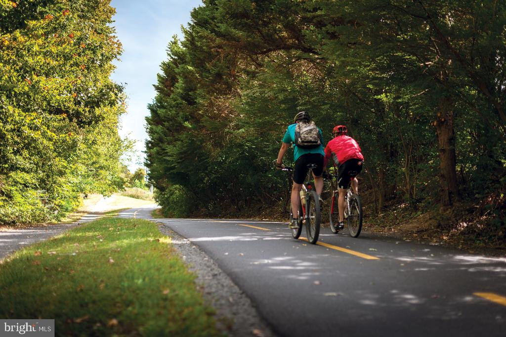 45 mile long, fully paved, W&OD Trail - 1960 ROLAND CLARKE PL, RESTON