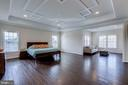 Magnificent owner's suite with trellis molding - 23065 CHAMBOURCIN PL, ASHBURN