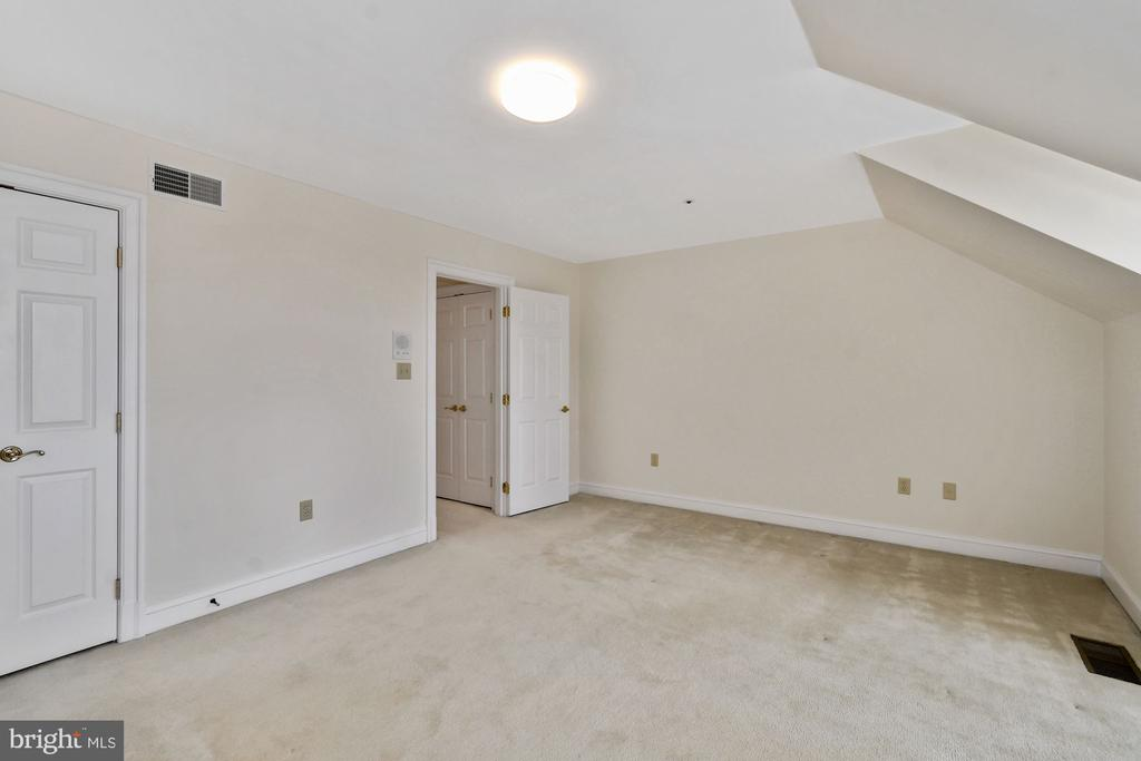 A sizable closet and neutral carpeting - 19 WILKES ST, ALEXANDRIA