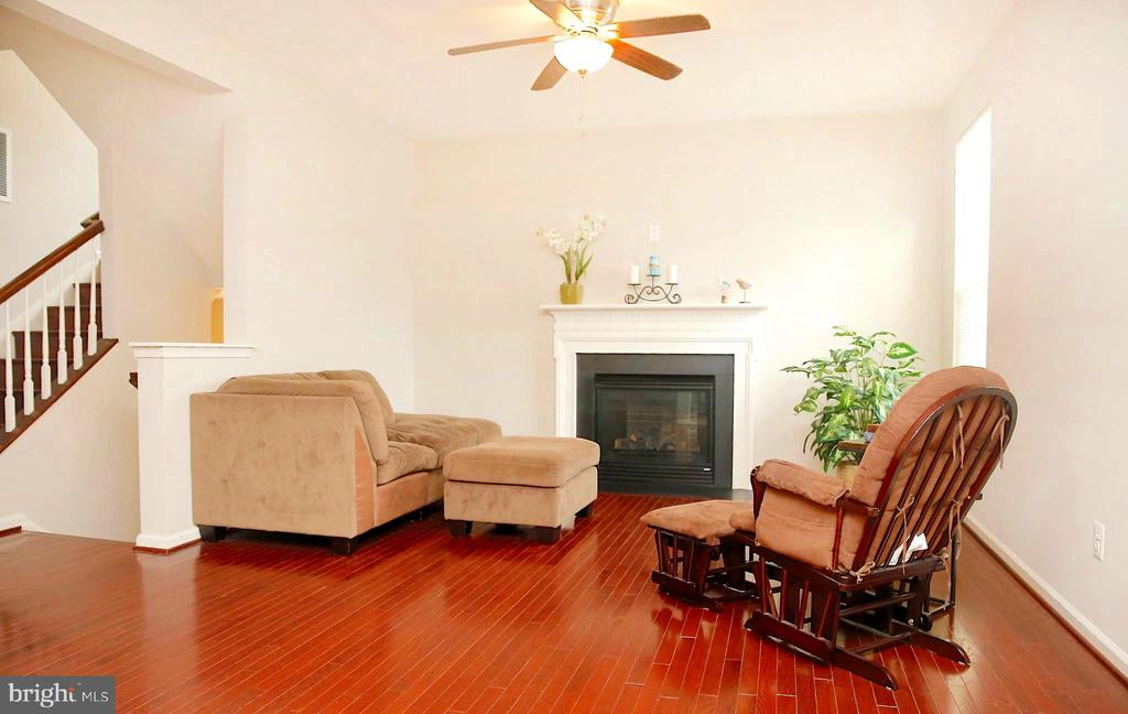 Cozy up in the living room with Gas Fireplace - 25928 KIMBERLY ROSE DR, CHANTILLY