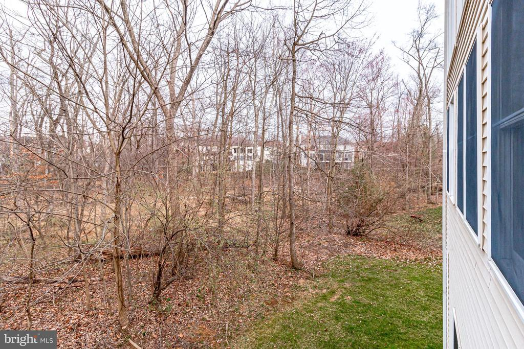 lot backs to the woods - 13451 GRAY VALLEY CT, CENTREVILLE
