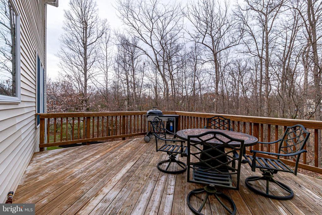 Deck - 13451 GRAY VALLEY CT, CENTREVILLE