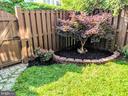 Backyard - 147 HERNDON MILL CIR, HERNDON