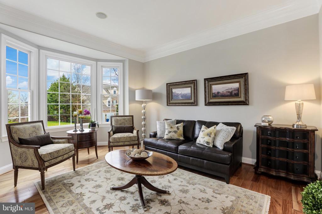 Sunlit living room - 43475 SQUIRREL RIDGE PL, LEESBURG
