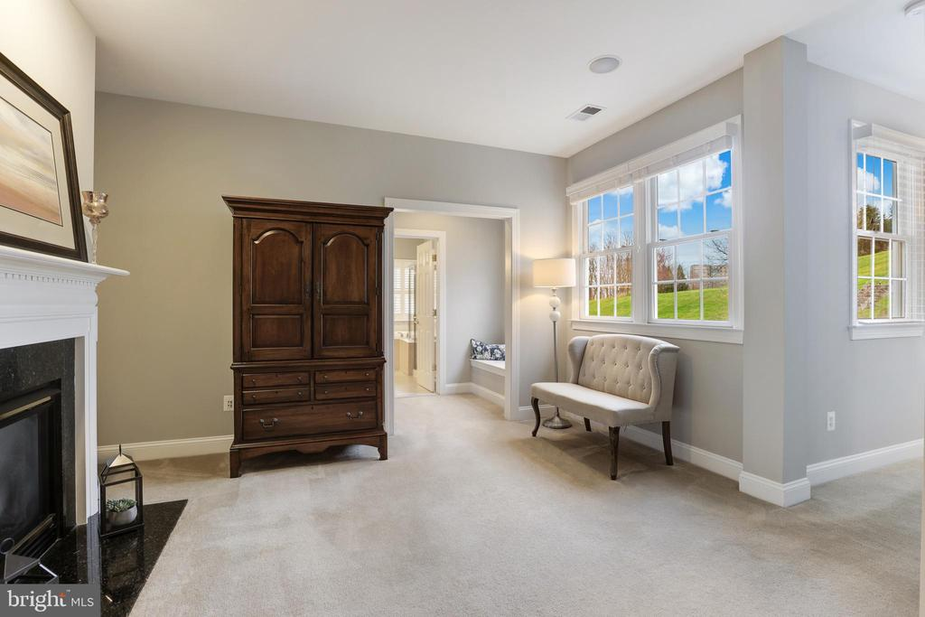 Master sitting room with fireplace - 43475 SQUIRREL RIDGE PL, LEESBURG