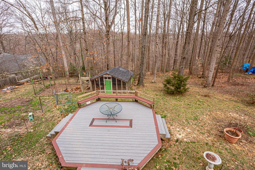 ENTERTAINING, GARDEN, SHED AND FOREST - 7365 BEECHWOOD DR, SPRINGFIELD