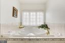 Luxury Bath / Jacuuzi  Tub - 11408 WOLFS LNDG, FAIRFAX STATION