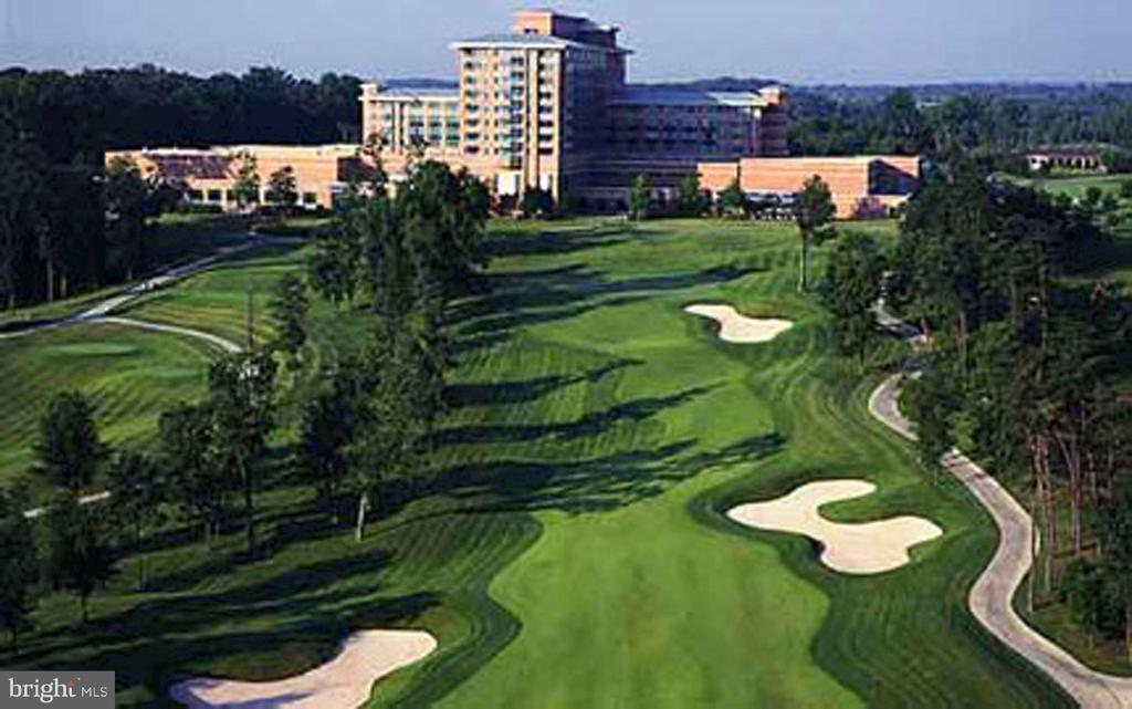 Golf memberships available - 43475 SQUIRREL RIDGE PL, LEESBURG