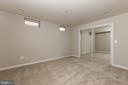 Lower Level Bonus Room with Large Closet - 42571 PELICAN DR, CHANTILLY