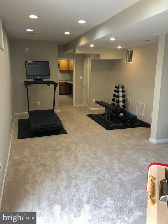Rec Room area/ Fitness Space, great spot for Bar! - 43773 FARMSTEAD DR, LEESBURG