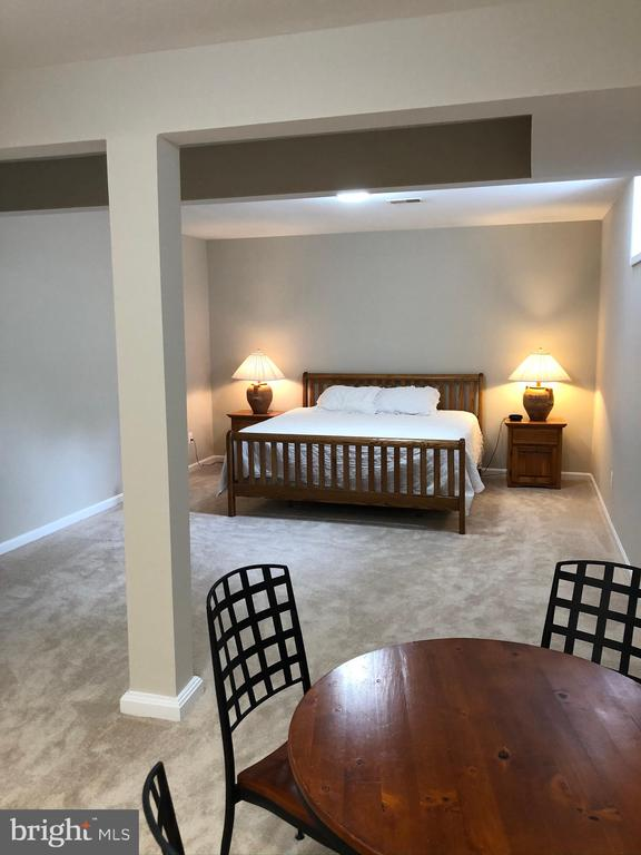Guest Suite/ 5th Bedroom on Lower Level - 43773 FARMSTEAD DR, LEESBURG