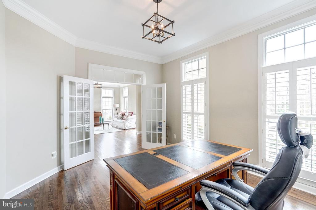 Main Level Office with French Glass Doors - 18777 UPPER MEADOW DR, LEESBURG