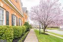 Front Walkway - 18777 UPPER MEADOW DR, LEESBURG
