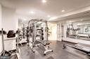 Lower Level Gym! - 18777 UPPER MEADOW DR, LEESBURG