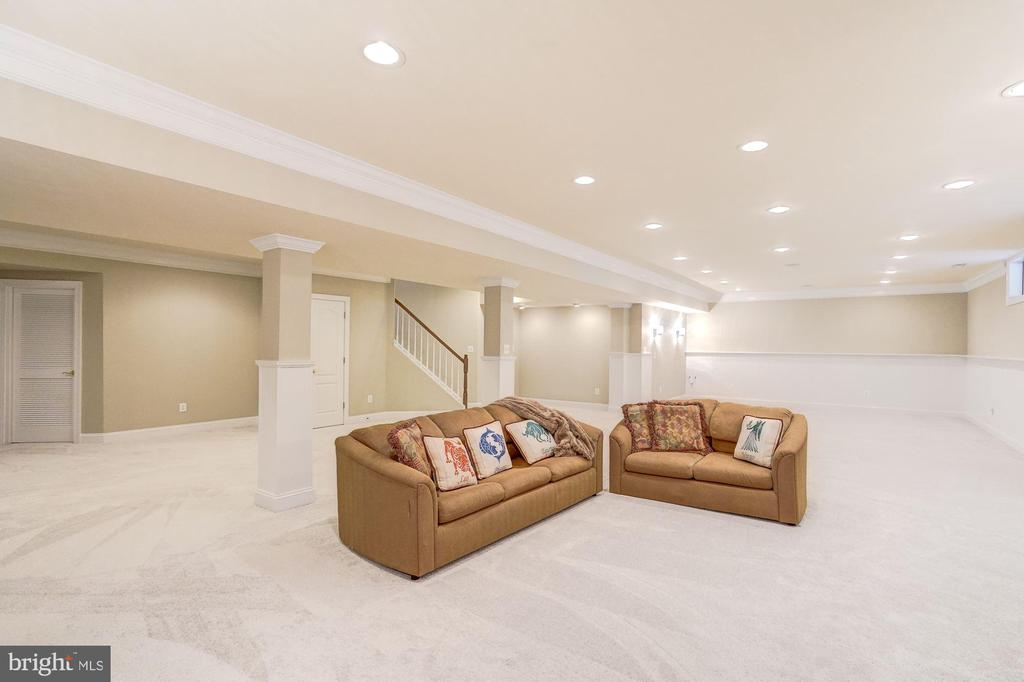 Lower Level Rec Room with Fresh Paint & New Carpet - 18777 UPPER MEADOW DR, LEESBURG