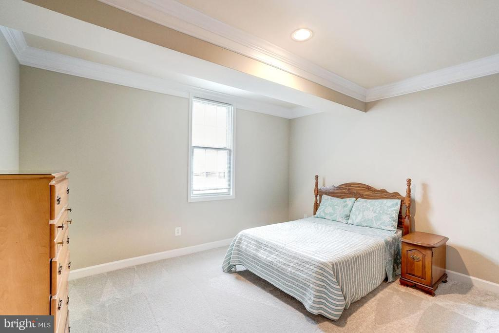 Lower Level 5th Bedroom with Fresh Paint & Carpet - 18777 UPPER MEADOW DR, LEESBURG