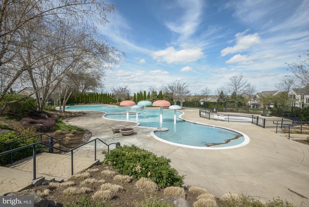 Community Outdoor Pool #2 - 18777 UPPER MEADOW DR, LEESBURG
