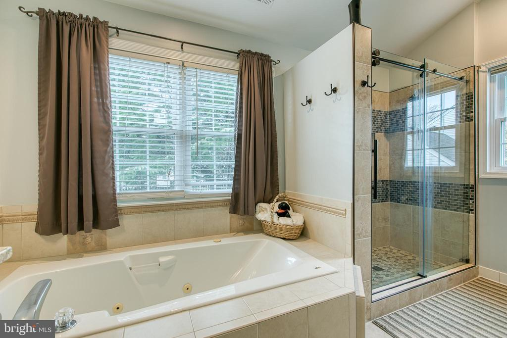 Jetted soaker tub with beautiful walk in shower - 102 NORTHAMPTON BLVD, STAFFORD
