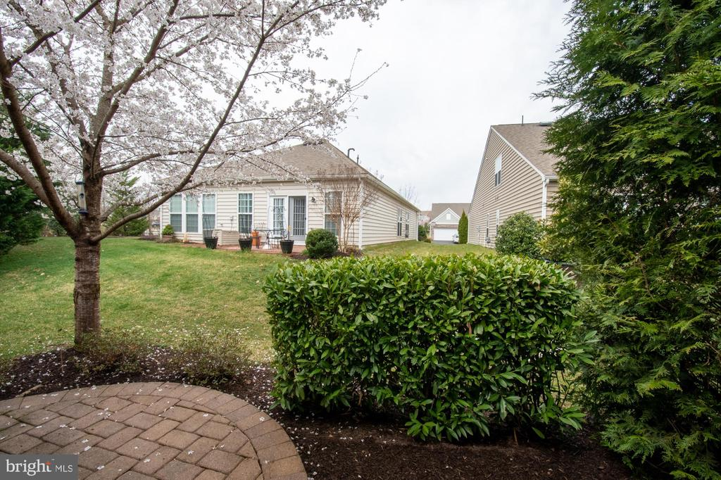- 44516 BLUERIDGE MEADOWS DR, ASHBURN