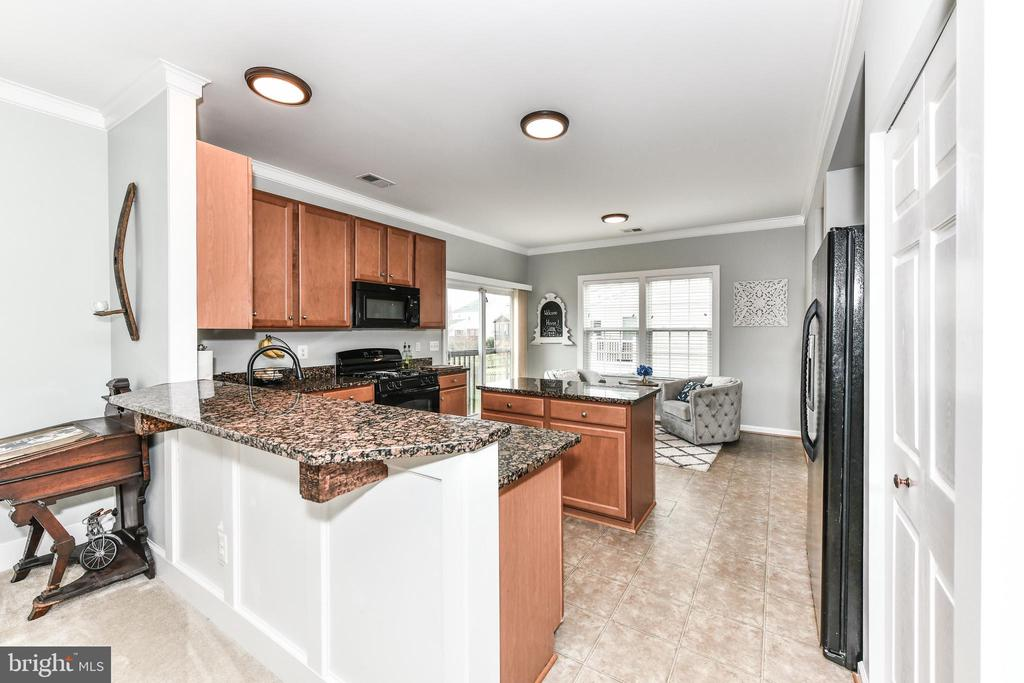 Granite and Upgraded cabinets! - 25974 KIMBERLY ROSE DR, CHANTILLY