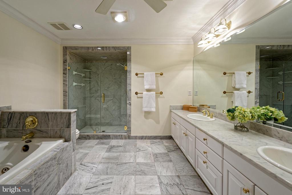 Marble flooring extends into the large shower - 19 WILKES ST, ALEXANDRIA