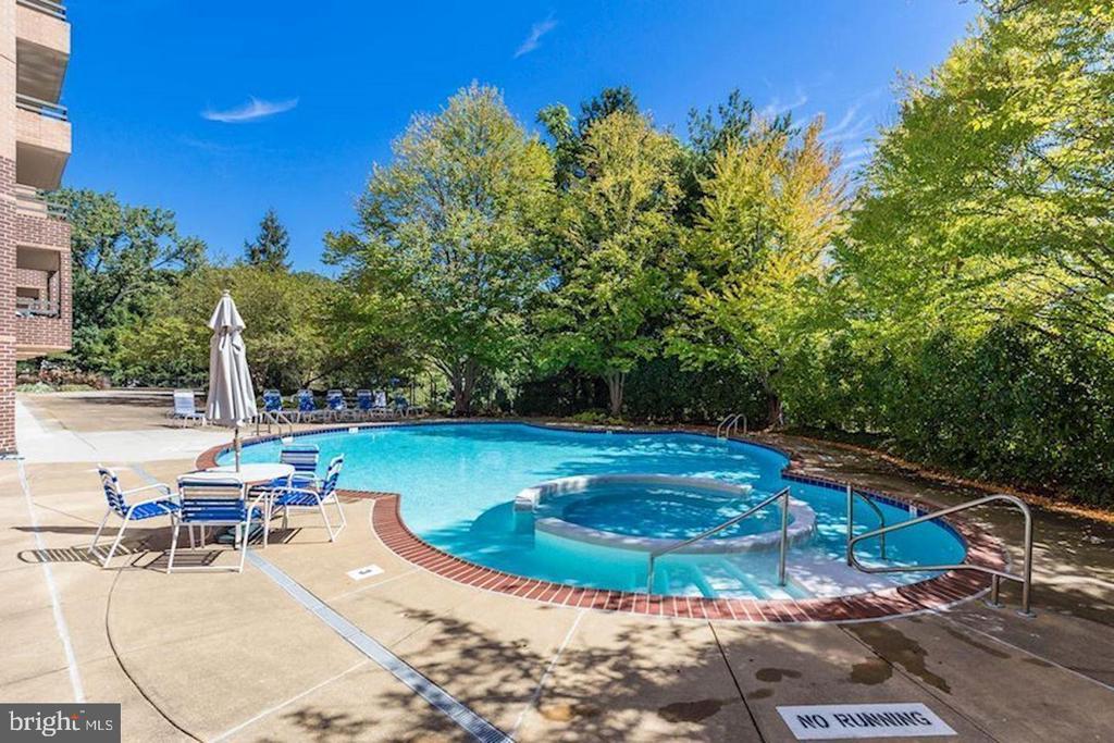 Beautiful Pool in Summer - 2111 WISCONSIN AVE NW #PH7, WASHINGTON