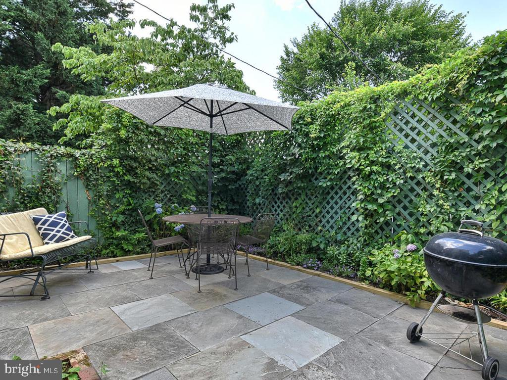 Looking  forward to Summer! - 121 W 2ND ST, FREDERICK
