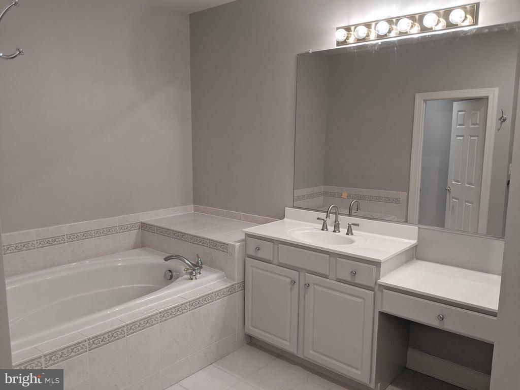 Master Bathroom - Tub - 18213 CYPRESS POINT TER, LEESBURG