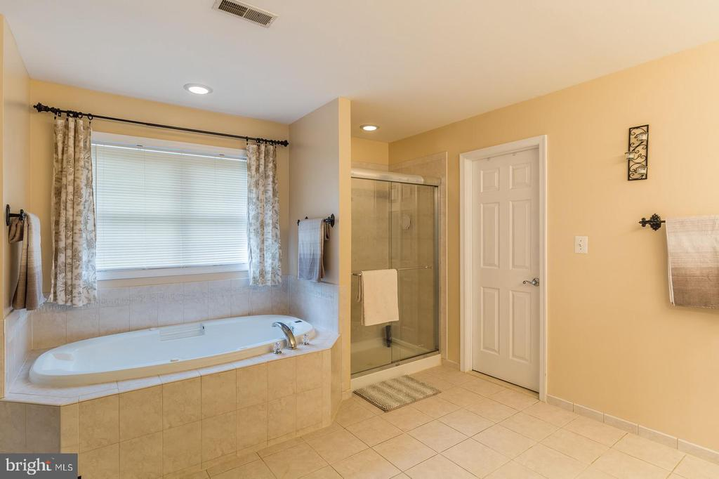 Jetted Tub & Stall Shower.... - 20226 BROAD RUN DR, STERLING