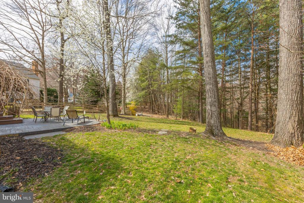 Just imagine when all the leaves are out <3 - 8206 CHERRY RIDGE RD, FAIRFAX STATION