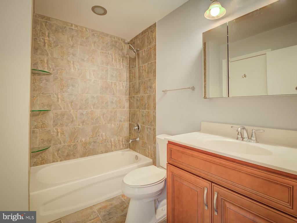 Nicely Renovated Bath With Glass Built-Ins - 20422 SUMMERSONG LN, GERMANTOWN