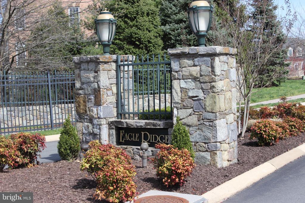 Entrance to Eagle Ridge neighborhood - 43663 PALMETTO DUNES TER, LEESBURG