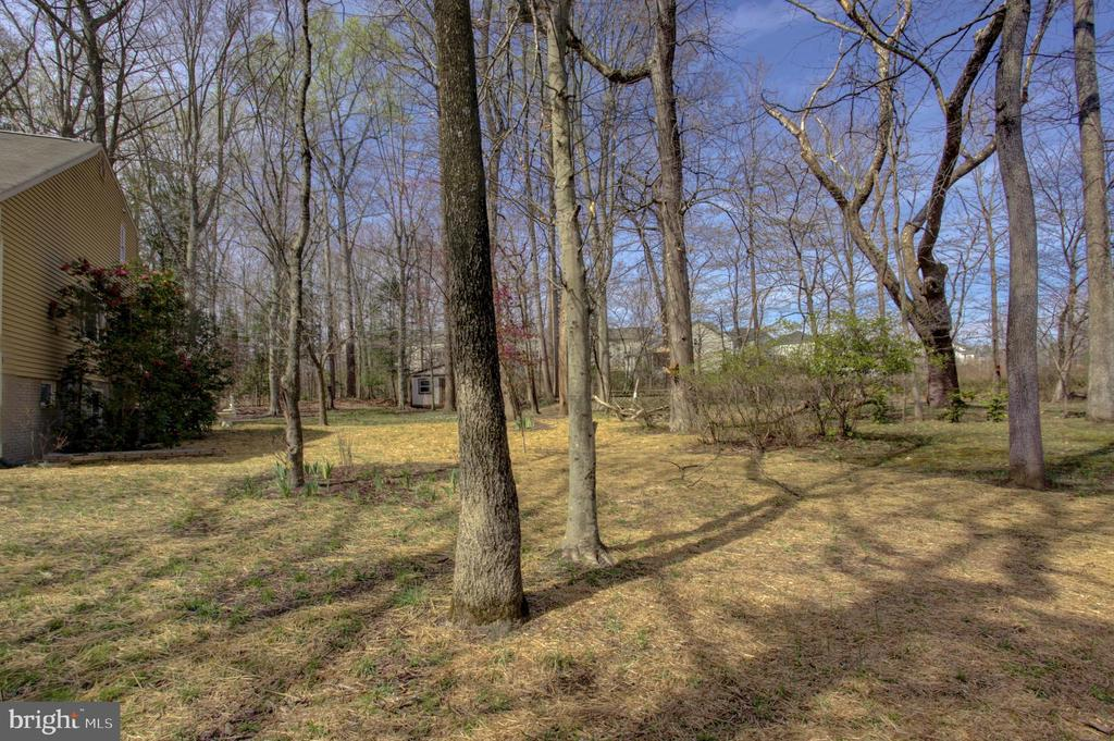 Park-like Side & Backyards open to Treed Reserve - 1430 AQUIA DR, STAFFORD