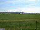 View of the surrounding farms - 2505 UNDERWOOD LN, ADAMSTOWN