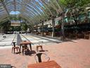 Lively & Exciting RTC - Restaurants & Shopping! - 12001 MARKET ST #150, RESTON