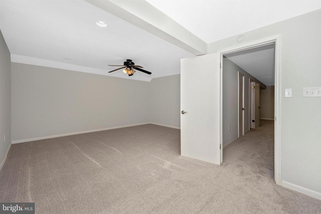 Lower Level-Bonus Room/Den - 8846 MAPLEVILLE RD, MOUNT AIRY