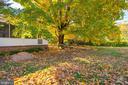 Gorgeous Backyard....large and fenced. - 405 HANOVER ST, FREDERICKSBURG