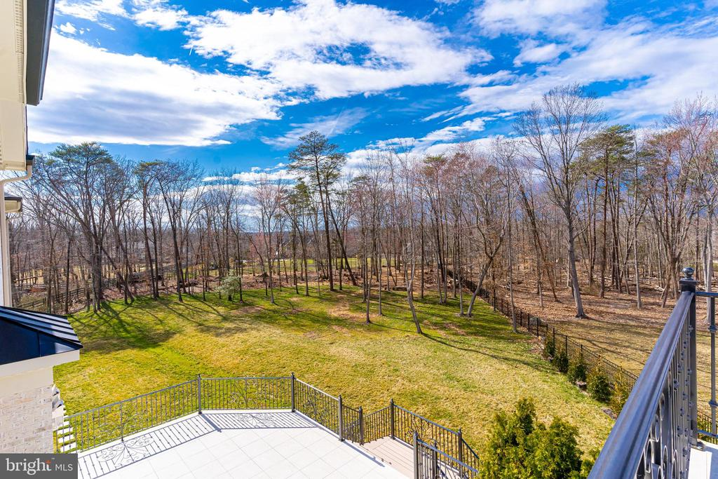 View from Owner's Suite Terrace - 11345 ALBERMYRTLE RD, POTOMAC