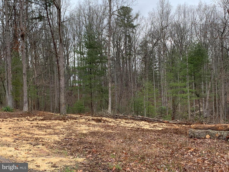 土地 為 出售 在 Rochelle, 弗吉尼亞州 22738 美國