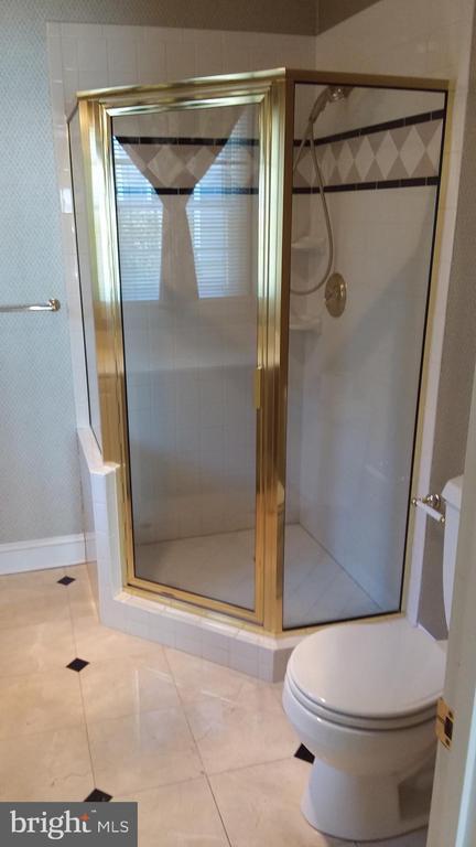 Shower in main level master bath. - 239 W MARKET ST, LEESBURG