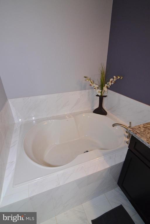 Soaking Tub in Master Bath - 22988 CHERTSEY ST, ASHBURN