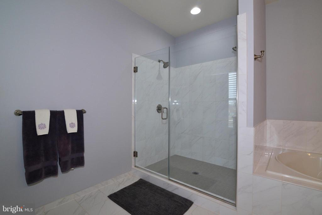 Full Bath Downstairs - 22988 CHERTSEY ST, ASHBURN