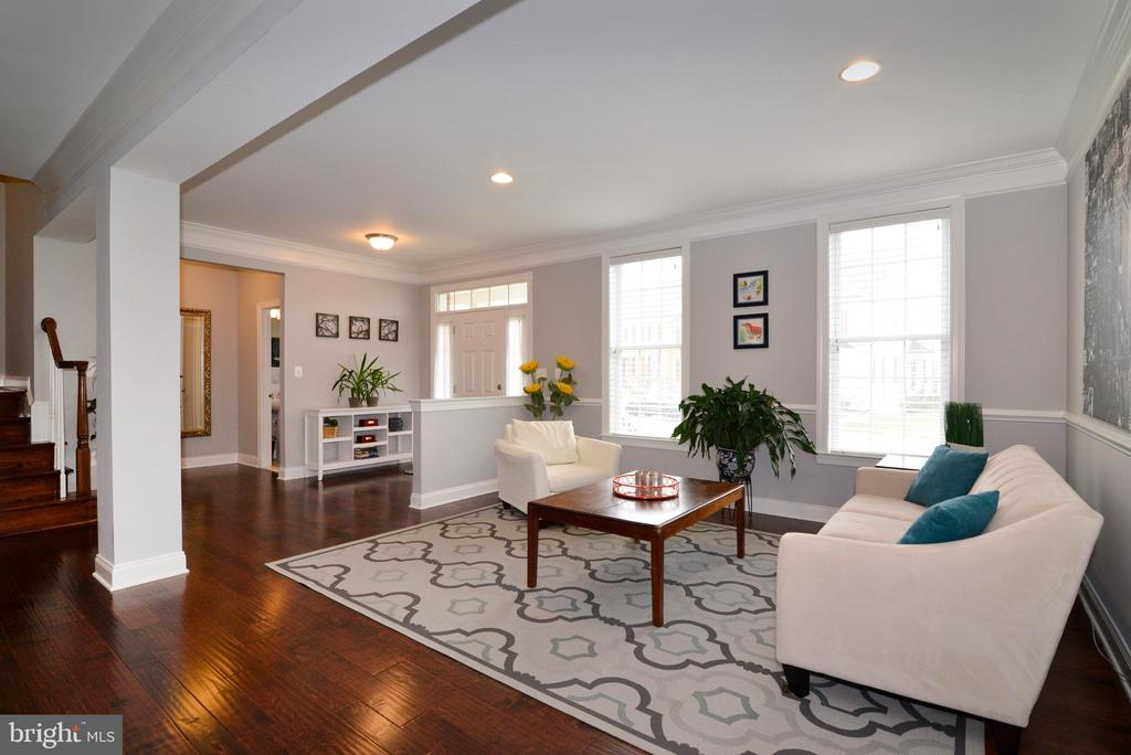 View of Living Room with Lots of Light - 22988 CHERTSEY ST, ASHBURN