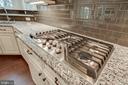 5 Burner Cooktop - 23219 LUNAR HARVEST LN, ALDIE