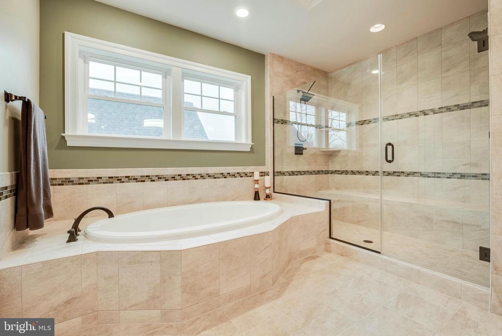 Master Bath - 23219 LUNAR HARVEST LN, ALDIE