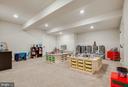 Spacious Rec Room (Basement) - 23219 LUNAR HARVEST LN, ALDIE