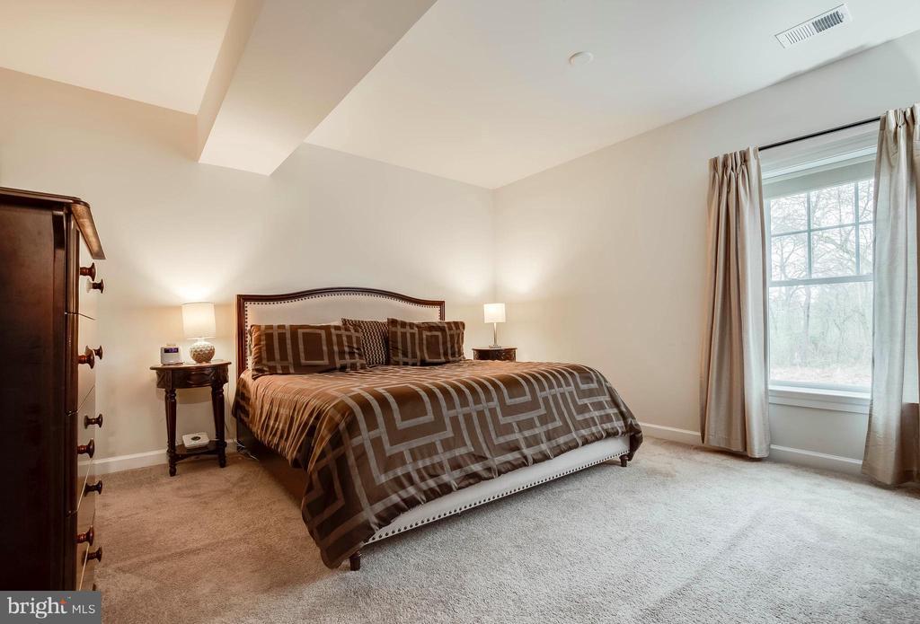 Basement Level Bedroom 6 - 23219 LUNAR HARVEST LN, ALDIE