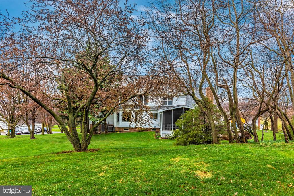 Some of the many fruit trees on the property. - 7799 COBLENTZ RD, MIDDLETOWN