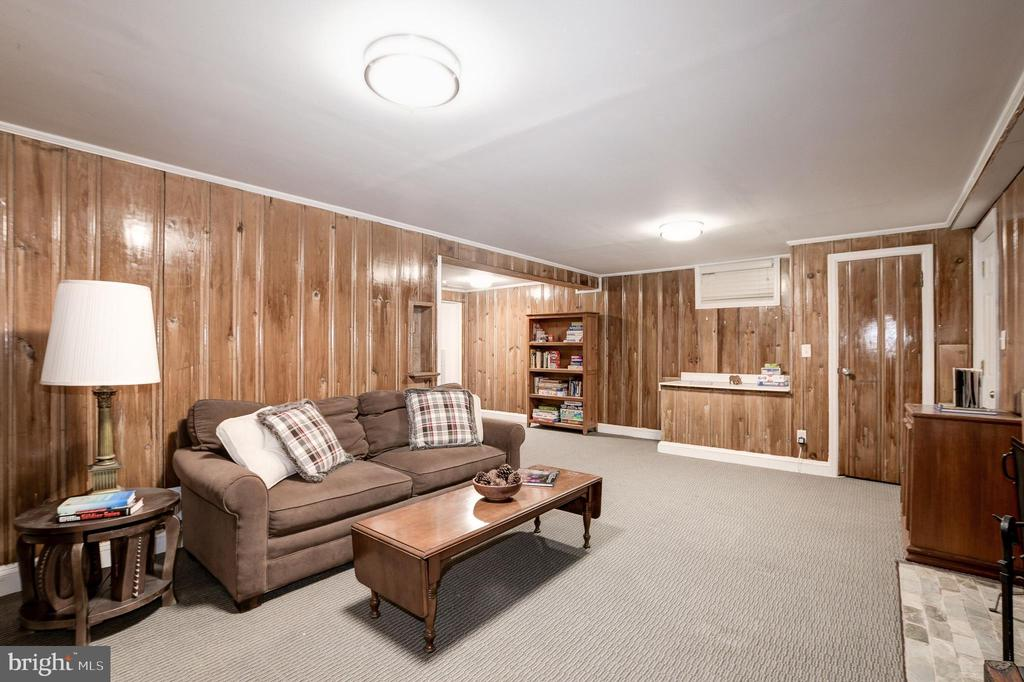 Another view of the lower level rec room - 6804 BROXBURN DR, BETHESDA