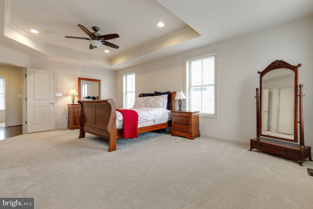 Master Suite with Tray Ceiling - 23578 PROSPERITY RIDGE PL, BRAMBLETON